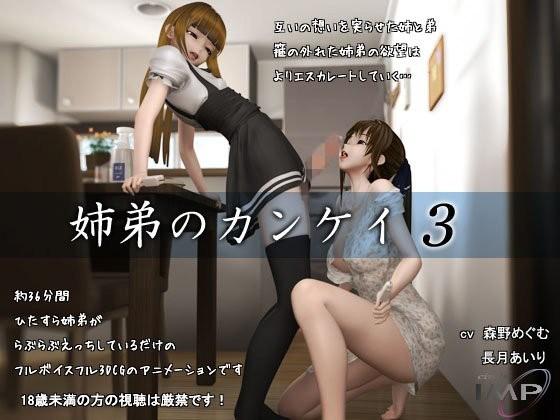 【3dアニメ 環】姉弟のカンケイ3~お互い好き同士だからいいよね~
