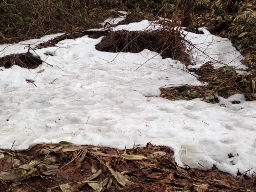 芳の平残雪