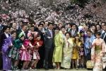 9 abesyusyou sakura