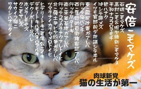 3mFahQp.jpg