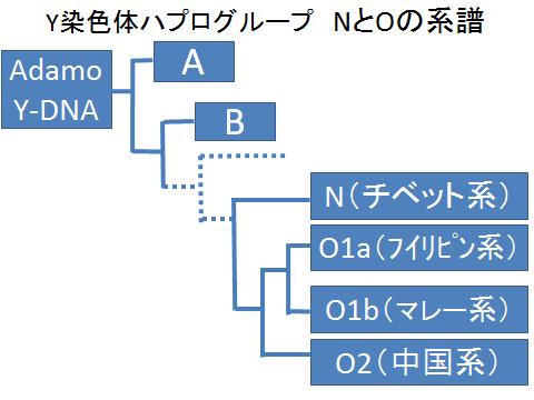 Y染色体ハプログループNとOの系譜