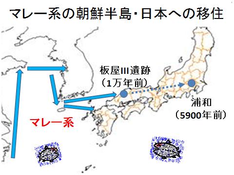 マレー系の日本移住1万年前