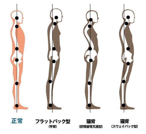 shisei-bunrui600.jpg