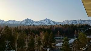 大雪山白金観光ホテル、部屋からの眺望