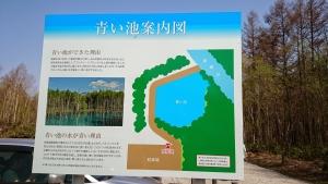 青い池、案内図
