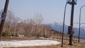 国道273号線、山中。