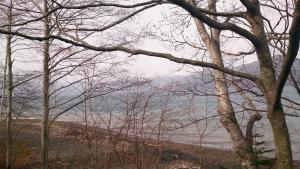 支笏湖畔2