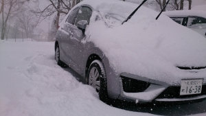 ニセコ 雪の朝2