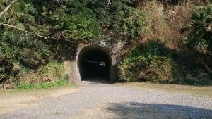 佐多岬、駐車場からの散策路、トンネル。