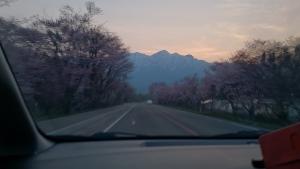 国道273号線を富良野へ。
