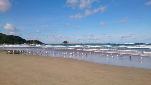 浦富海岸2