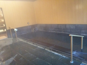 鷹の家、大浴場、内湯2