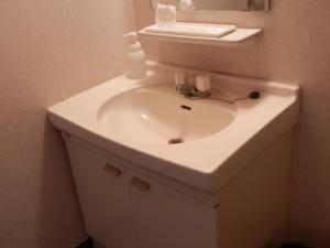 アーデンホテル阿蘇、部屋、洗面台。