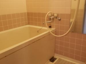 アーデンホテル阿蘇、部屋、独立式バスルーム。