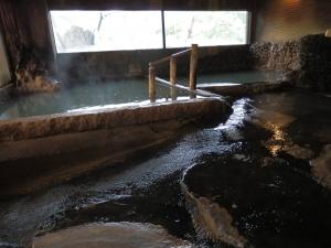 アーデンホテル阿蘇、大浴場、内湯2
