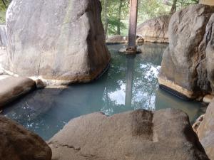 アーデンホテル阿蘇、大浴場、露天風呂2