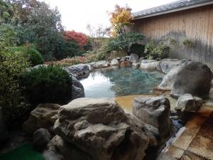 阿蘇プラザホテル、大浴場、庭園露天風呂1