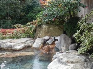 阿蘇プラザホテル、大浴場、庭園露天風呂3