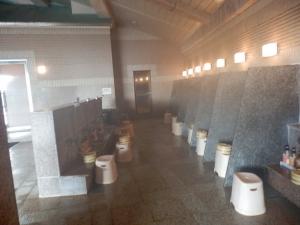 阿蘇プラザホテル、大浴場、内湯3