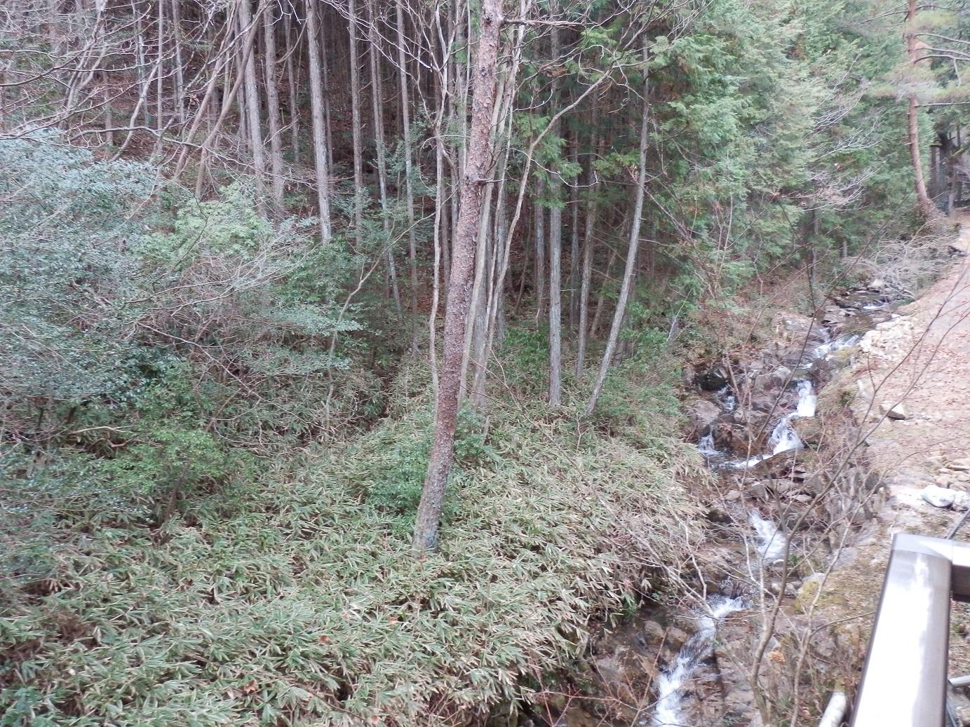 岩寿荘、和室、眺望。