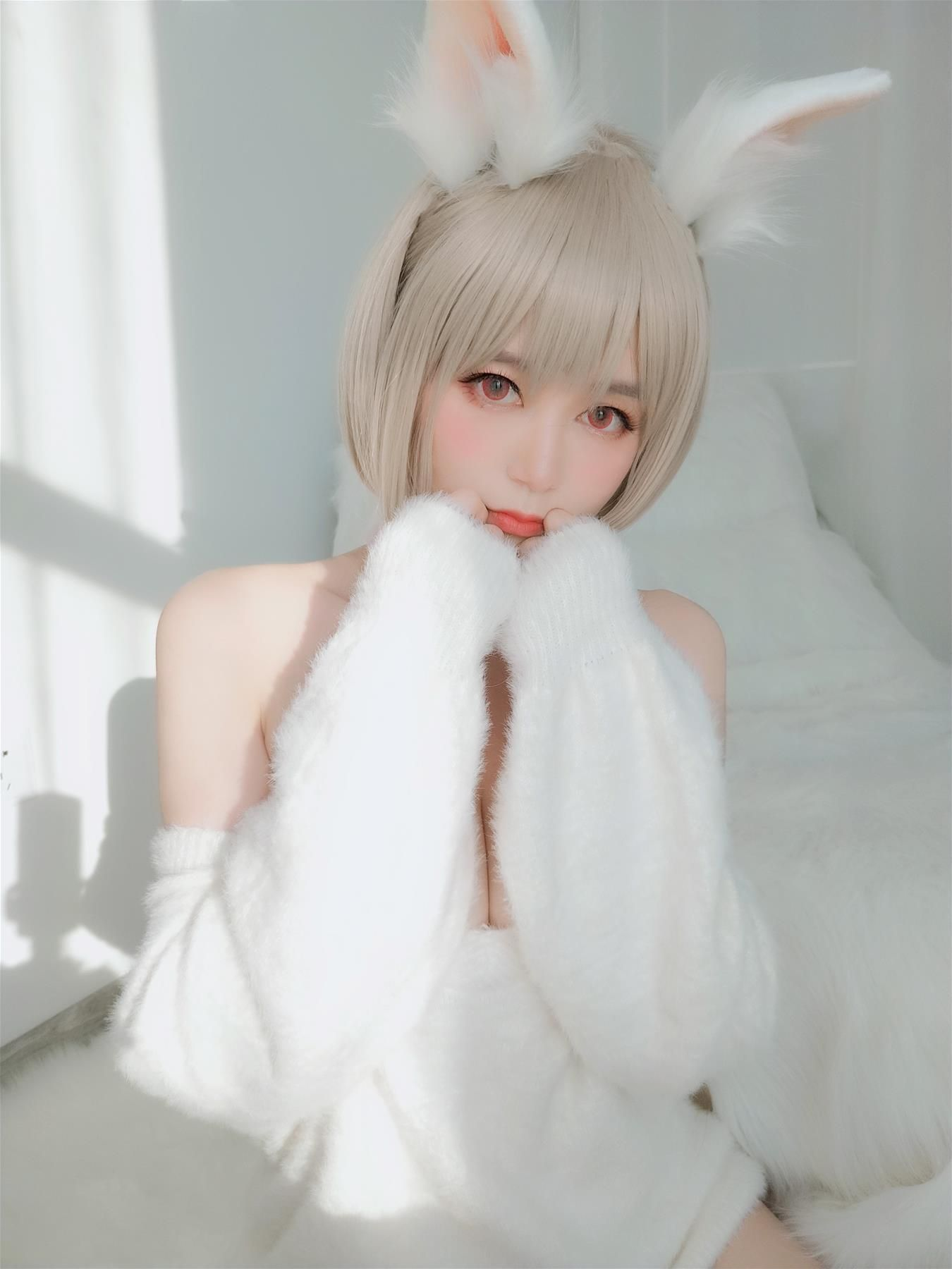little white rabbit090