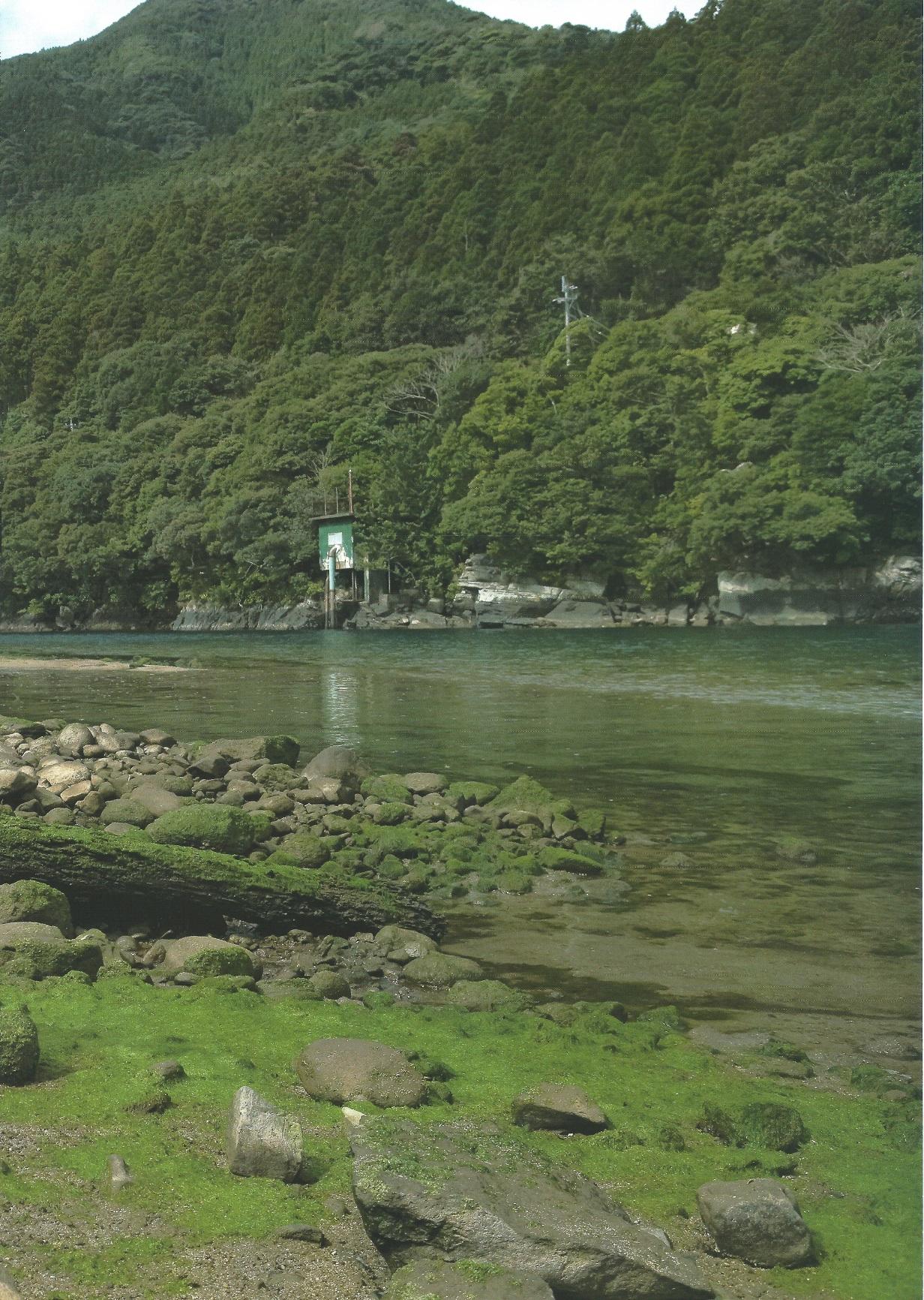 yagamikumi2013058.jpg