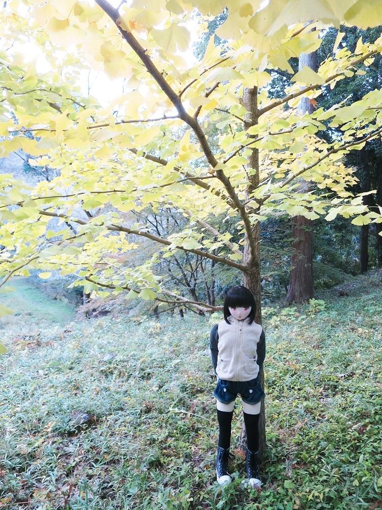 IMG_3890 - コピー (2)