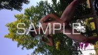 kaisei-blog-0024-P-M-07-sample-photo (2)