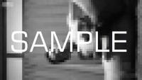 kaisei-blog-0027-P-M-09-sample-photo (6)