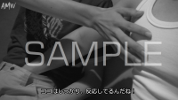 B-D-C-S-SYUN-2017-02-sample-photo (4)