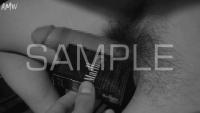 B-D-C-S-SYUN-2017-06-sample-photo (20)