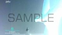 SUBARU-blog-012-P-M-S-07-sample-photo (9)