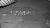 GAYBAR-Series-BARTENDER-sample-photo (31)