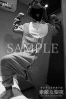 XmasSPECIAL-Santa Reindeer for Lovely holy Night-Moving-PhotoAlbum-sampl (2)