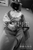 XmasSPECIAL-Santa Reindeer for Lovely holy Night-Moving-PhotoAlbum-sampl (5)