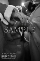XmasSPECIAL-Santa Reindeer for Lovely holy Night-Moving-PhotoAlbum-sampl (23)