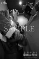 XmasSPECIAL-Santa Reindeer for Lovely holy Night-Moving-PhotoAlbum-sampl (24)