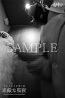 XmasSPECIAL-Santa Reindeer for Lovely holy Night-Moving-PhotoAlbum-sampl (30)