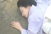 桜の樹の下で逝った菊乃