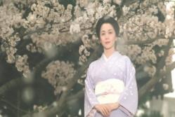 桜の樹の下で微笑む菊乃