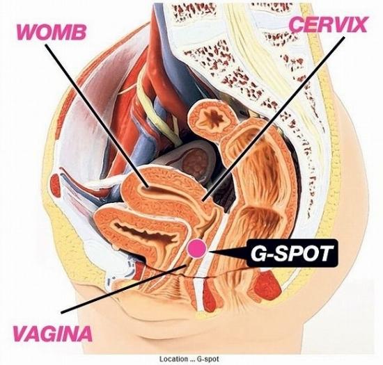Gスポットをチンコの先っぽでグリグリ刺激してるセックス画像30枚の3