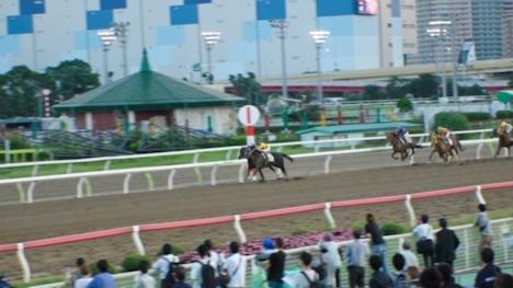 【ナンパTV】某競馬場で馬好き女子=ウマジョをナンパ!馬並みチ〇ポで荒ぶる男に跨り華麗な騎乗位を披露!天才巨乳ジョッキー誕生の瞬間!! まこ 21歳 居酒屋でバイト 2