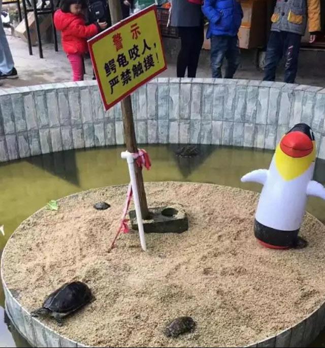 01-14中国動物園