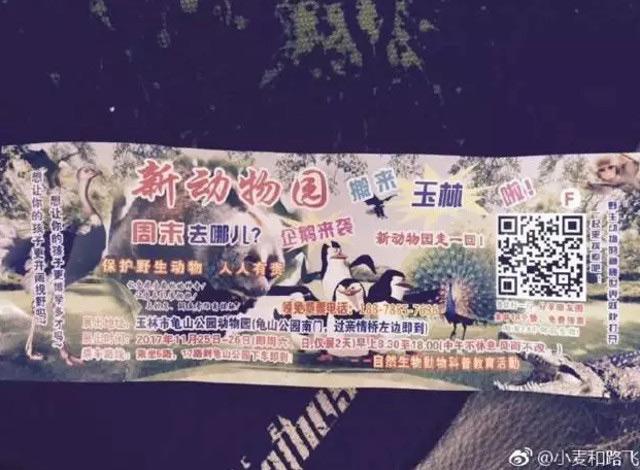 02-7中国動物園