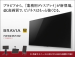 Businessbravia-654x496.jpg