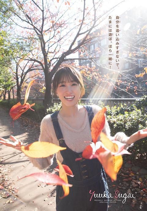 菅井友香12