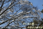 108B-IMG_619606.jpg