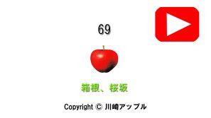 01-069_箱根、桜坂