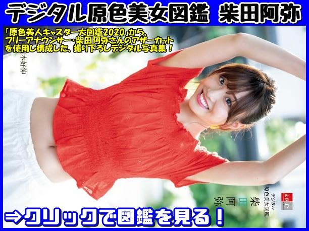 デジタル原色美女図鑑 柴田阿弥の表紙画像です