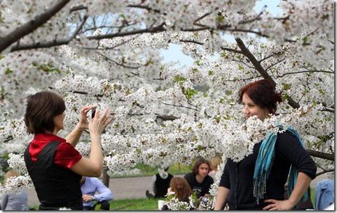 【世界の快道でイク!リトアニア編】命のビザで紡がれた絆の国の美女達01杉原桜公園